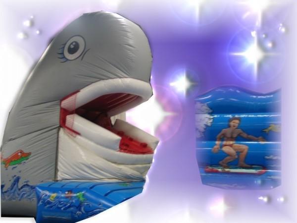 Snappy Wal mit bewegl. Maul und Rutsche